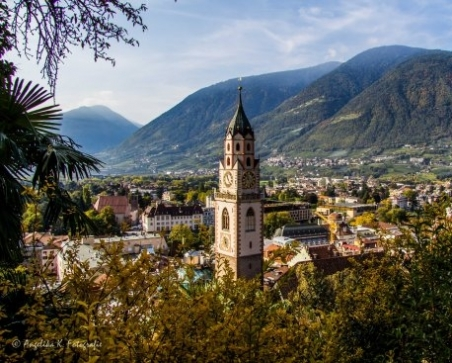 Colours of autumn in Meran